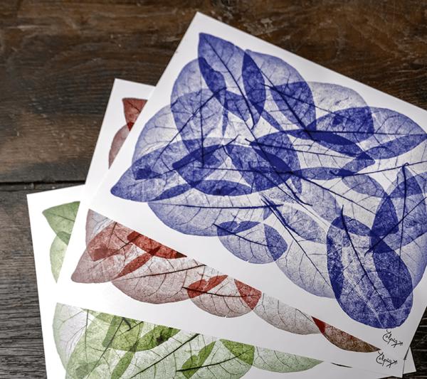 Fotografías Hojas - Láminas en papel de fotografías Hojas - Estampación de Diseño Natural.