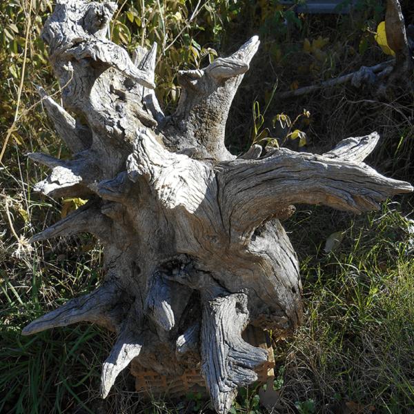 Escultura castaño claro - Maderas Diseño Natural.